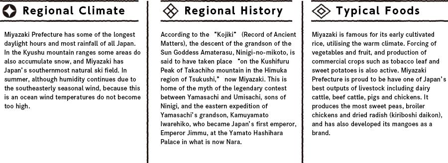 Miyazakiの特徴