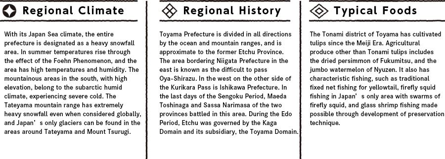 Toyamaの特徴