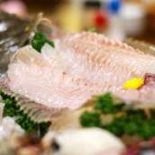 Kasado Hirame Sushi