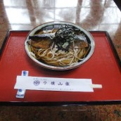 Nishin Soba (pacific herring noodle)