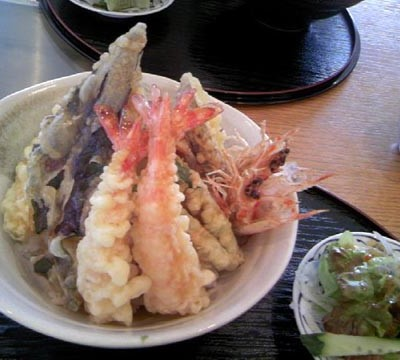 Tendon / Rice Bowl with Tempra on top