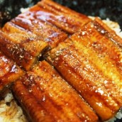 Unagi (eel) dishes