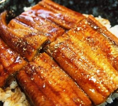 Unagi (eel) dishes