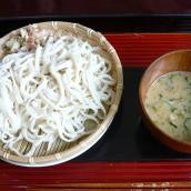 Hiyajiru Udon