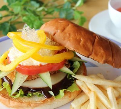 Kagayaki healthy hamburger